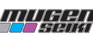 pieces mugen